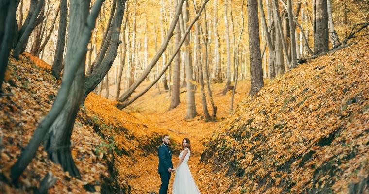 W kolorach jesieni